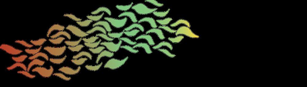 proteus fund logo